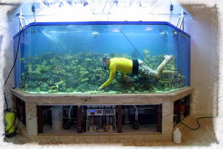 Как в аквариуме сделать воду прохладнее